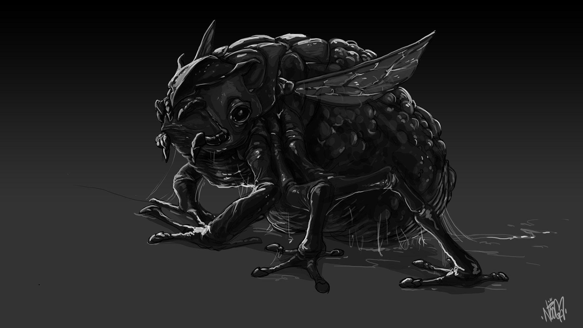 frogmoth-sketch-1