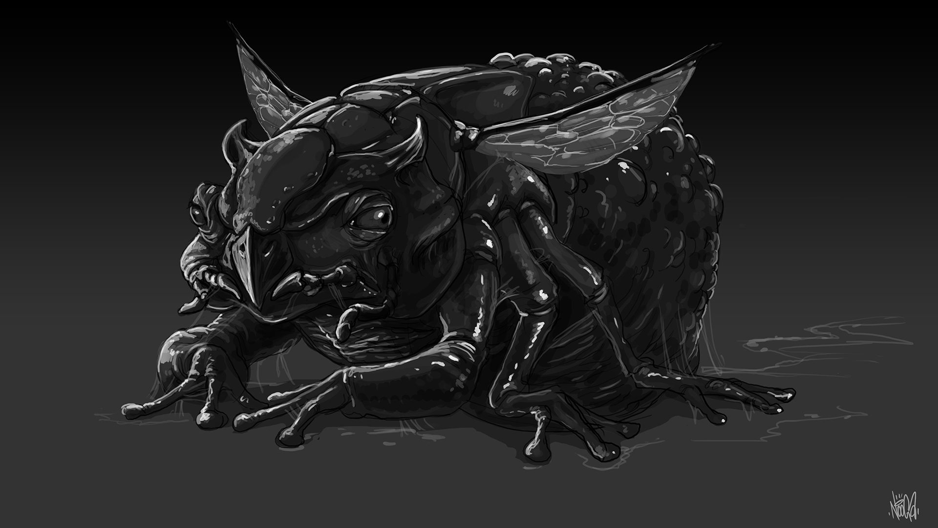 frogmoth-sketch-2