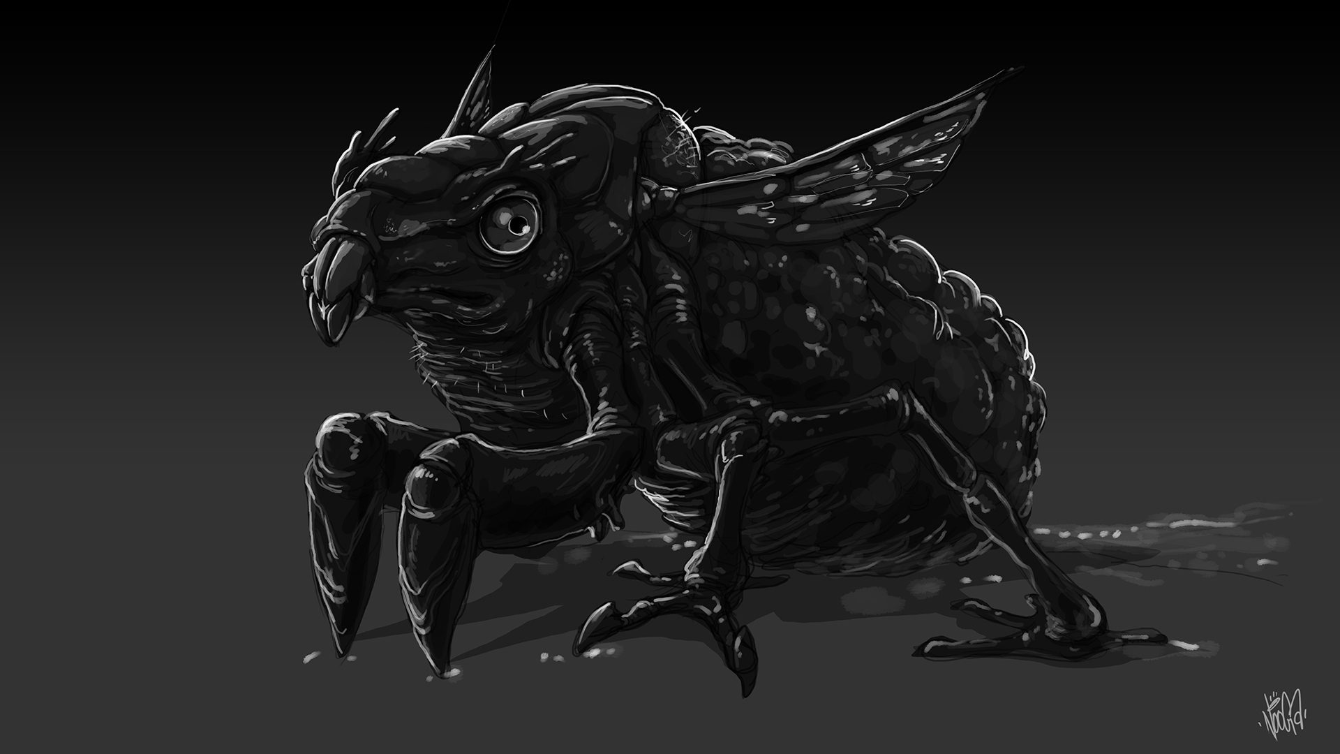 frogmoth-sketch-3